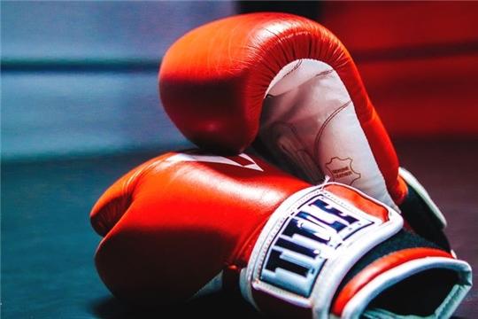 Боксеры Чувашии достойно выступили на всероссийском онлайн-турнире 'Битва городов'